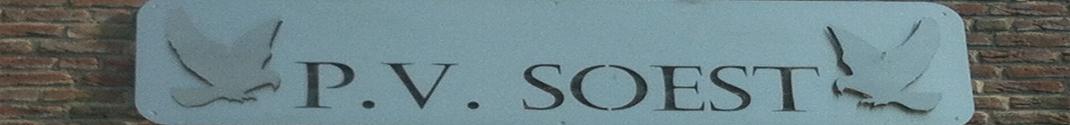 P.V. Soest